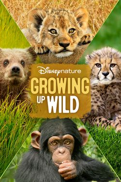 Disneynature Growing Up Wild