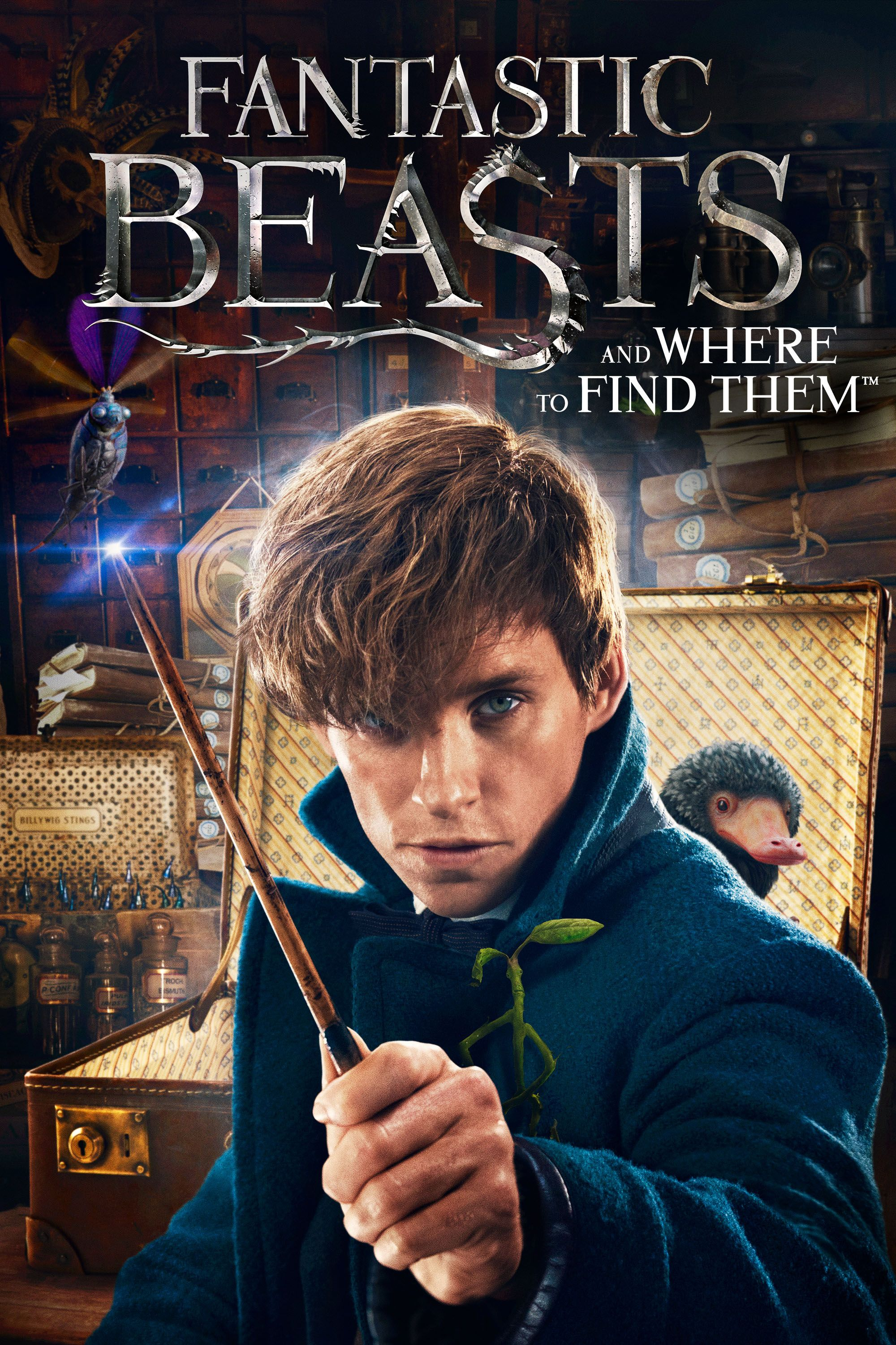 Fantastic Beasts And Where To Find Them Full Movie Movies Anywhere