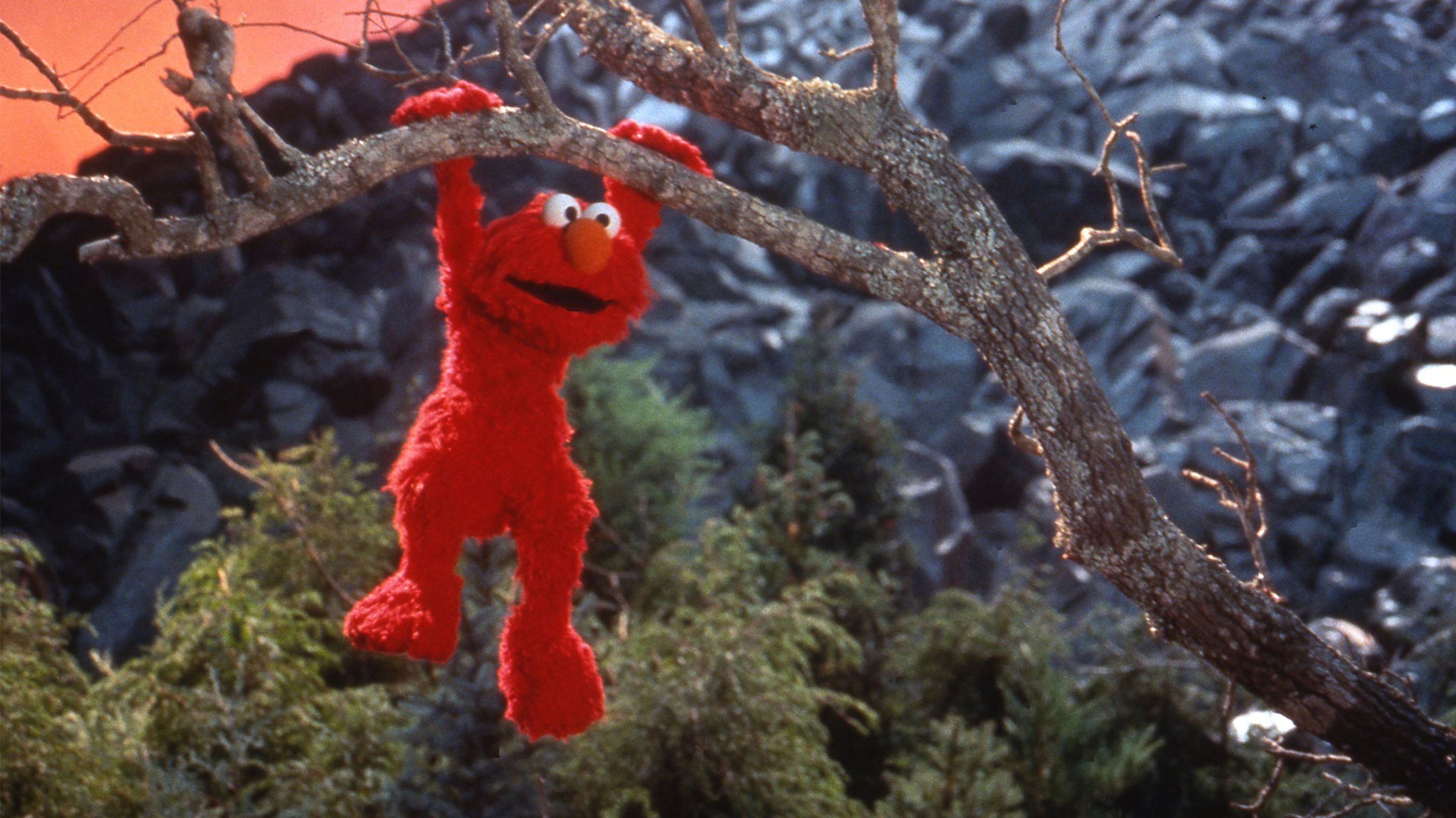 The Adventures Of Elmo In Grouchland Full Movie Movies